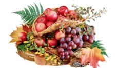 一篮子水果图片