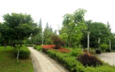 公园小景图片