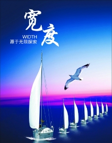 企业文化 宽度 帆船 海鸥图片