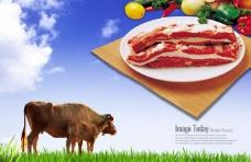 韓國食材牛排宣傳海報psd素材