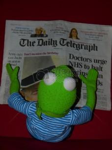 正在看报纸的青蛙