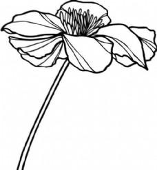 鲜花 花卉 矢量素材 eps格式_0049
