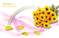 鲜花与花瓣图片psd分层素材