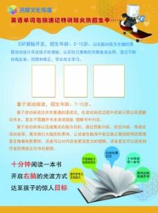 橙色花纹培训班彩页高清背景psd分层下载
