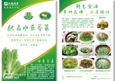 宣传单  水东芥菜