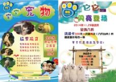 宠物宣传单