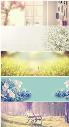 唯美花卉全屏背景