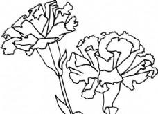 鲜花 花卉 矢量素材 eps格式_0071