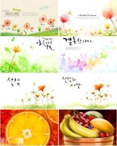 花朵和水果背景
