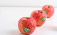 水果苹果图片