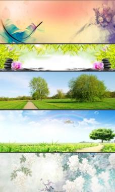 绿色的树木