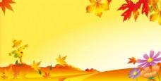黄色秋天枫叶素材