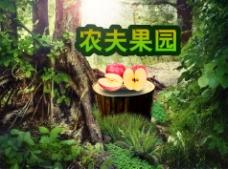 淘宝苹果水果海报