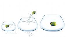 三个玻璃鱼缸与跳跃的鱼