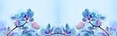 清爽蓝色花朵淘宝海报