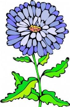 花朵 花草 鲜花 矢量 EPS格式_0014