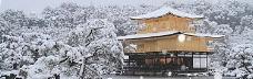 冬天雪景banner创意设计