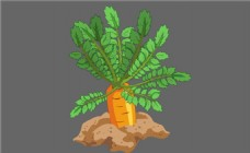 红萝卜植物flash动画