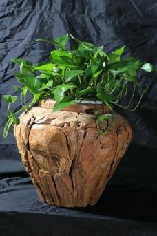 木质花盆 家居饰品图片