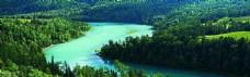 绿色自然海报背景