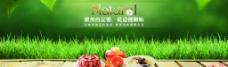 草地 叶子 绿色背景 碗 甜品图片