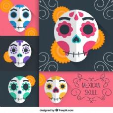 墨西哥头骨的种类