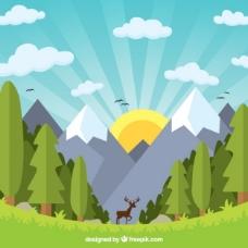 平坦美丽的山区风景与鹿