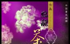乌龙茶图片