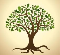 茂盛绿色栎树