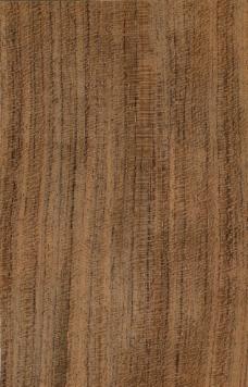 高清木材贴图图片