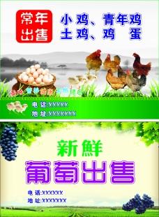 种植 养殖业