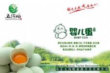 五沟峪绿色健康婴儿蛋宣传海报