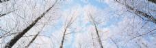 冬天雪景图片背景素材 (12)
