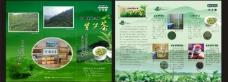 紫笋茶三折页图片