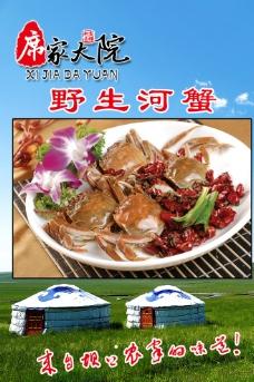 野生河蟹图片