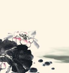 水墨夏日荷花图片