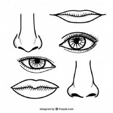 手拉式的鼻子和嘴唇