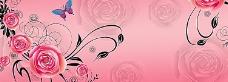 粉色 背景