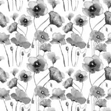 水墨罂粟花背景