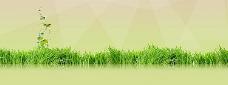春季草地背景