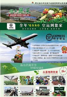 正新农业有机蔬菜省外宣传单页图片