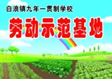 蔬菜菜园图片