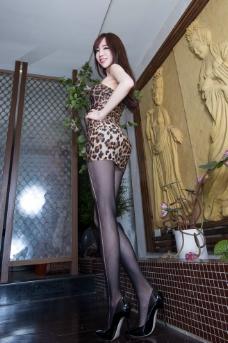 豹纹美女图片