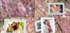 美丽清新的樱花婚礼相册AE模板