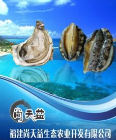 海产品公司展板图片