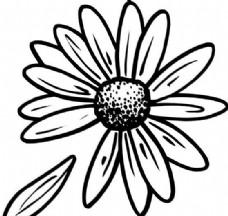 鲜花 花卉 矢量素材 eps格式_0021