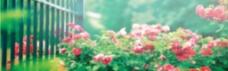 春天花卉素材背景