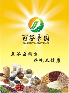 五谷杂粮产品宣传单页