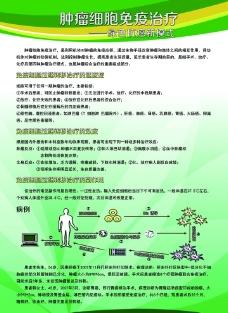 肿瘤细胞免疫治疗 医疗展板图片