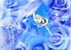 蓝色玫瑰情缘